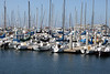 Monterey harbour