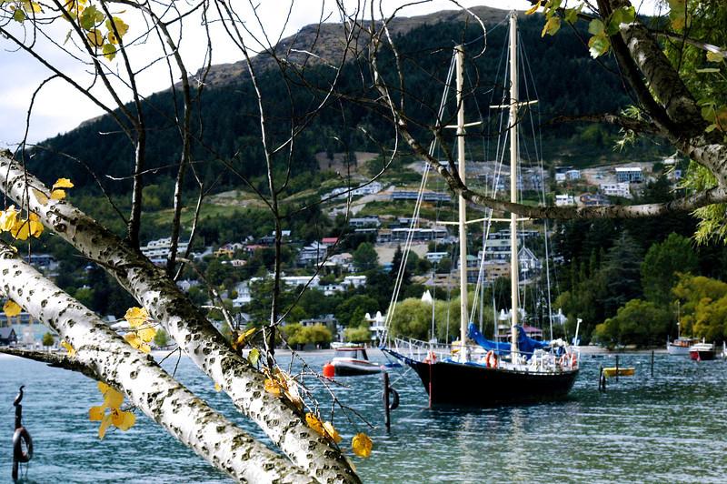 Harbor at Queenstown, New Zealand