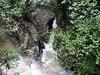 Waitomo Stream, near Waitomo