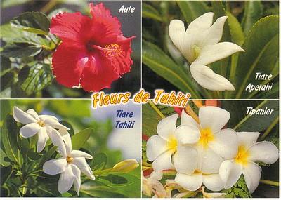15_Fleurs_de_Tahiti