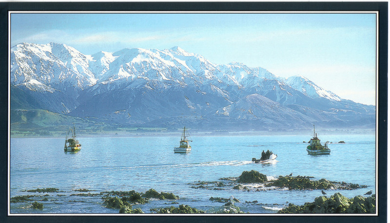 390_Kaikoura Harbour  Where the mountains and snow are close to the sea
