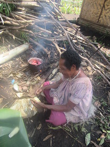 368_Kingalri Village  Melpa (local tribe)  Village Study  Cooking Sweet potatoes and Taros