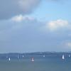 113_Hauraki Gulf  Rangitoto Channel  Sailing Boats