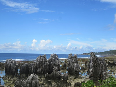 010_Nauru  Surrounded by a coral reef, with a fertile coastal strip just inland from the beach