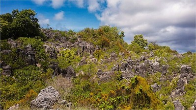 040_Nauru  The Central Plateau  Currently, only extracting Secondary Phosphate  Limestone Pinnacles
