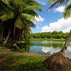 032_Nauru  Buada Lagoon (rainwater only)  The only body of water on the island  Surrounded on all sides by dense vegetation and groves of palm trees