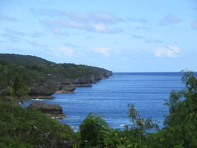 042_Niue  Western Side  Alofi Town Center  Spectacular steep limestone cliffs along the coast