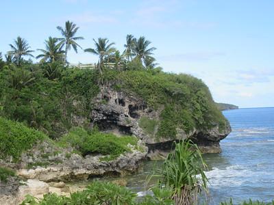 043_Niue  Western Side  Alofi Town Center  Spectacular steep limestone cliffs along the coast