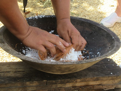 026_Ancient Tonga village  Traditional methods of obtaining coconut milk  Part 4 of 5