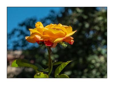 Santa Fe NM_180914_S751332