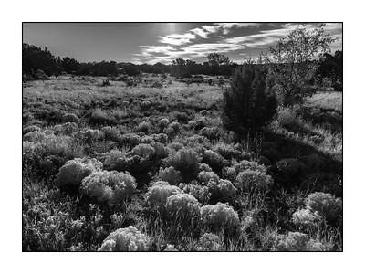 Santa Fe NM_180914_MG_0596