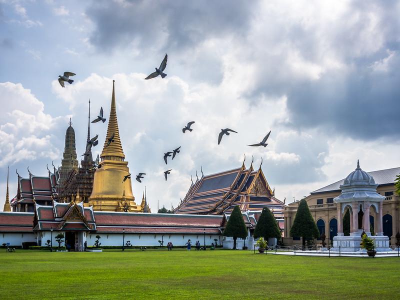 Birds at Wat Phrakaew, Bangkok, Thailand