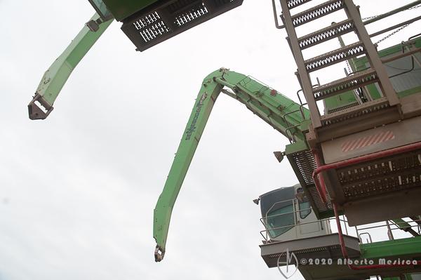 cranes #2