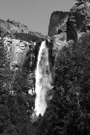 USA - California - Yosemite National Park - B&W