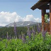 Rhondaview, Crested Butte, Co