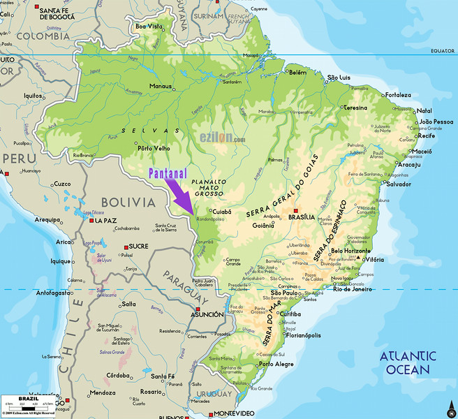 Map of Brazil and the Pantanal