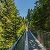 Capilano Suspension Bridge Park, Vancouver, British Columbia