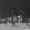 National Gallery of Canada/ Contemporary Art Maman by Louise Bourgeois