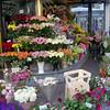 always flower markets