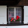 flower boxes in every window