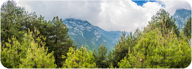 Mt Olympus National Park