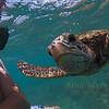 Me an a Green Turtle, Kona Hawaii 2008