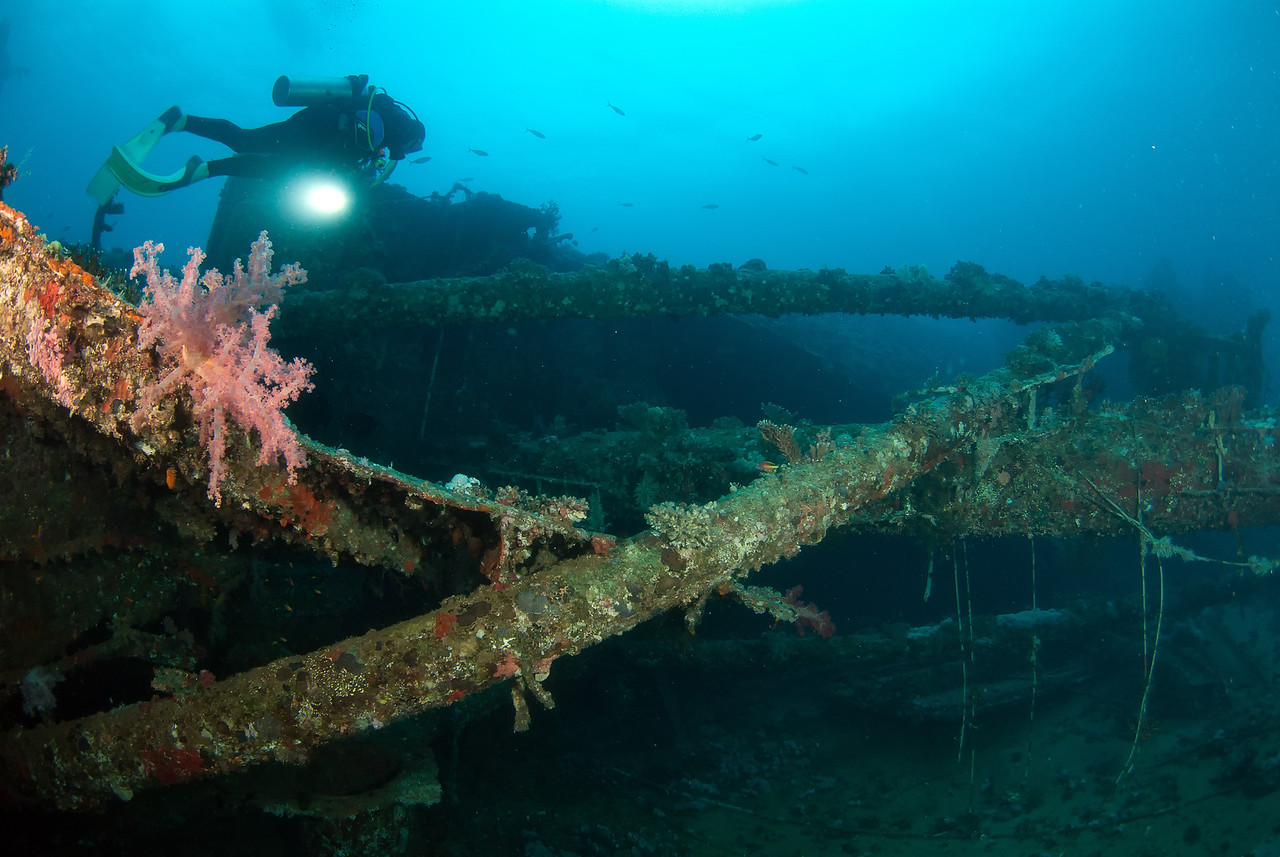 Masts and booms of the wreck of the Kimon M. northern Red Sea, Egypt. 2012