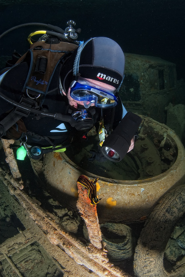 A diver looks at a Nudibranch, wreck of the Thistlegorm, northern Red Sea, Egypt. 2012