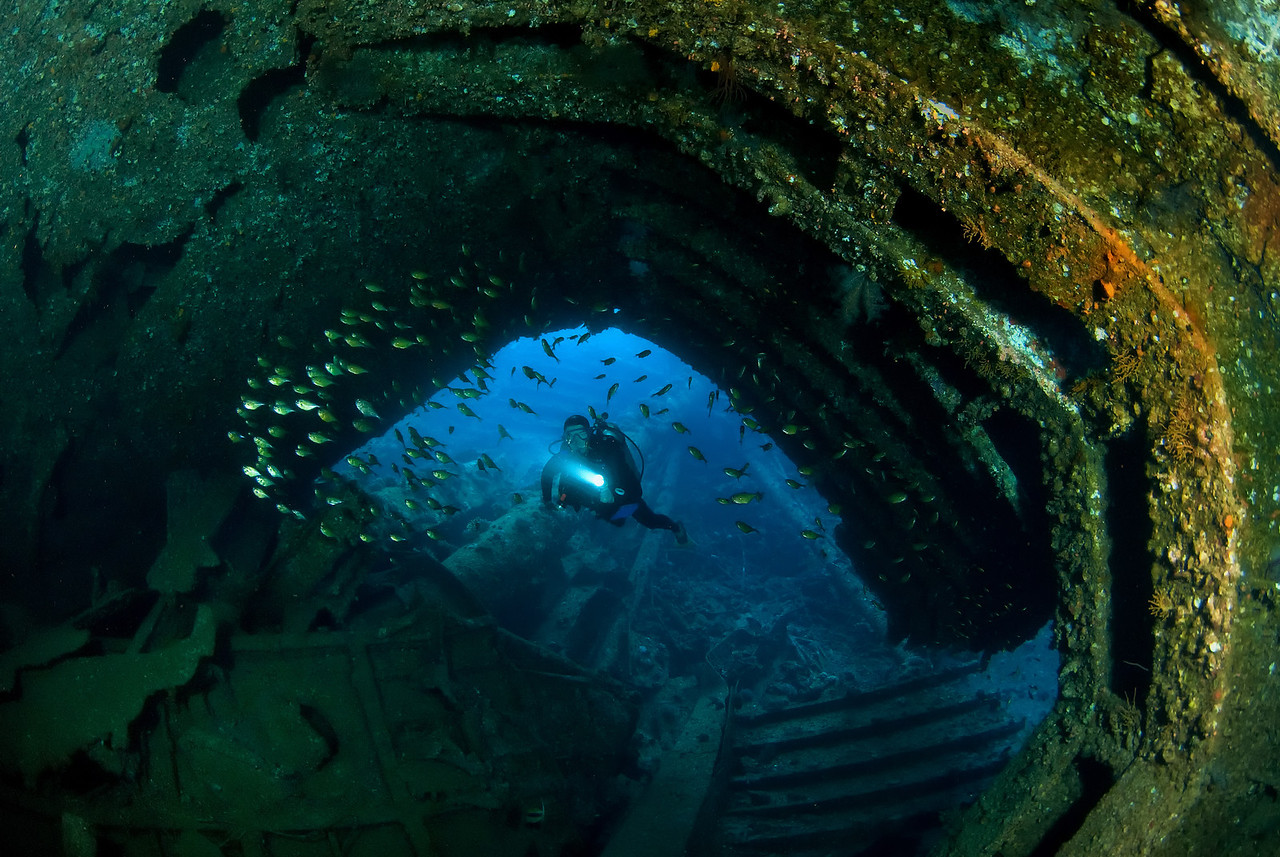 The wreck of the Kimon M. Sank in 1978. northren Red Sea, Egypt. 2012