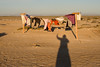 Laundry in the wind at sunset. It was quite windy most of the time we were there. <br /> <br /> March 2010.