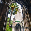 Barcelona Cathedral Gallery
