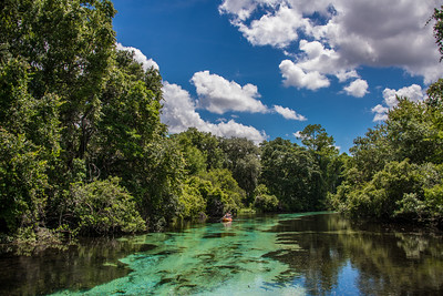 Weeki Wachee River
