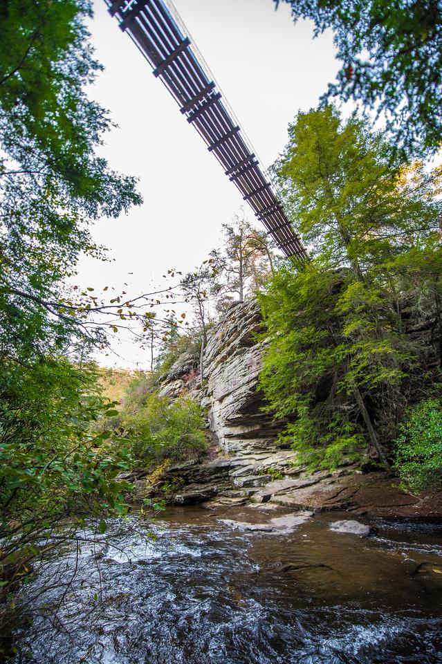 Suspension Bridge over Piney Creek , TN
