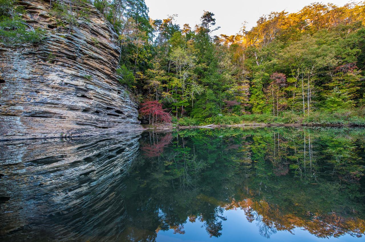 George Hole, TN