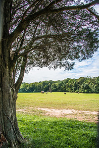Manassas, VA