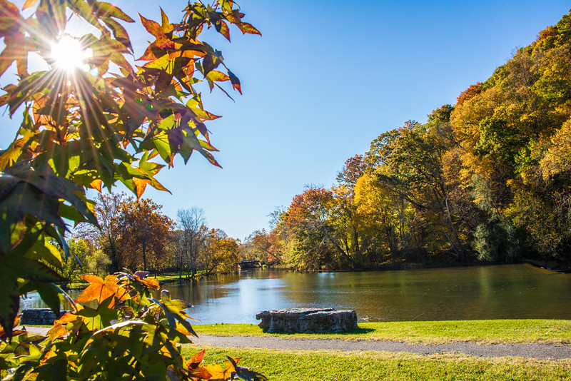 Duck Pond in Narrows, VA