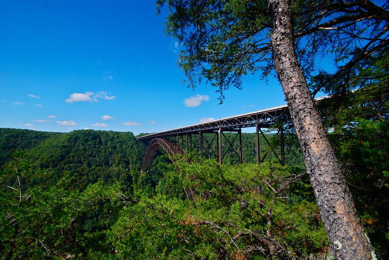 New River Gorge Bridge in summer