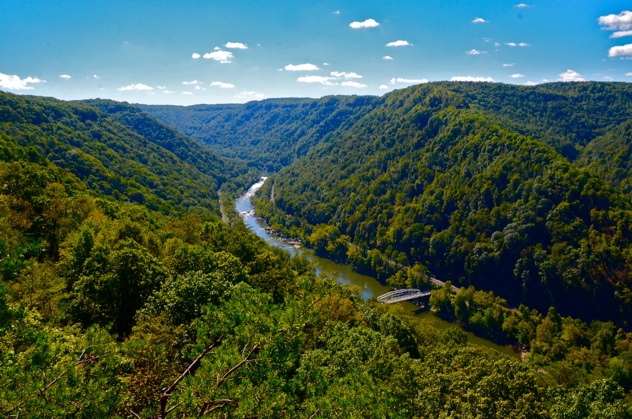 New River Gorge in summer