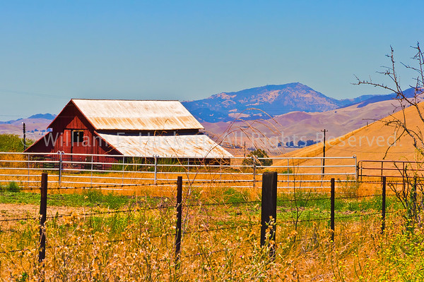 Barn and Mount Diablo1854