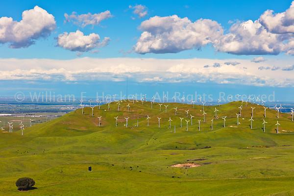 Altamont Windmills0255