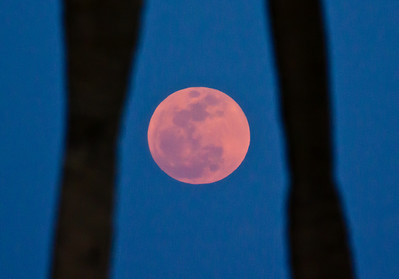 pinkish hue to the Supermoon, May 2012