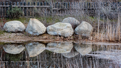 another pond reflection