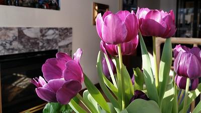 bloomin things..