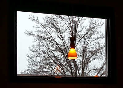 Bare Trees, Gray Lines, and lamp