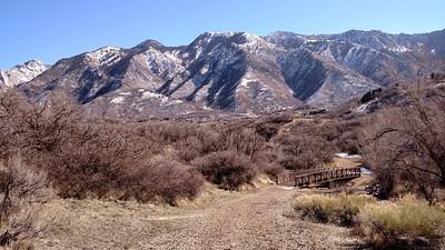 Quad recovery terrain - 2.61 mi, 263' vertical, PTE 3.1