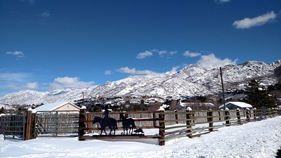 Wasatch, snow, and UT blue