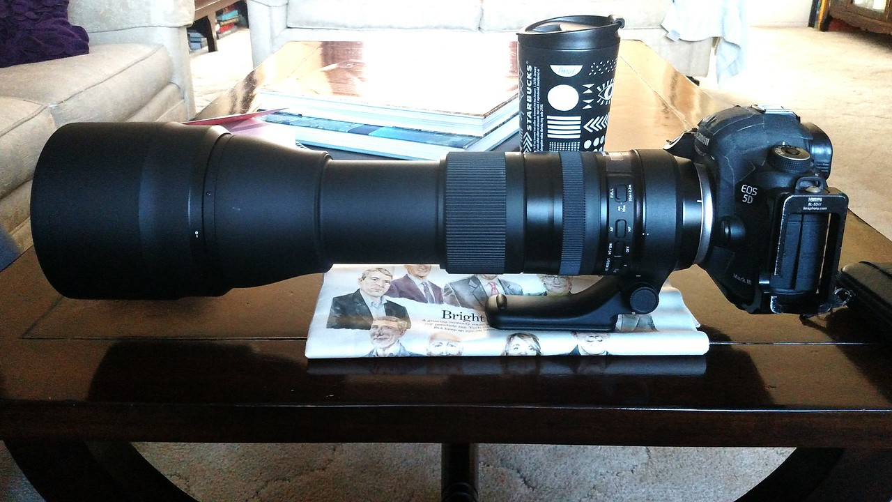 Tamron 150-600 G2, in 600 mm mode