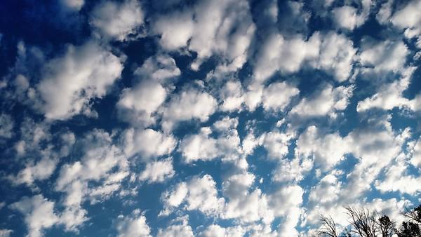 """Like Georgia O'Keefe 's, """"Sky Above Clouds"""", w/o the sky above"""