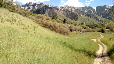 Lone Peak wilderness above Dimple Dell Pk