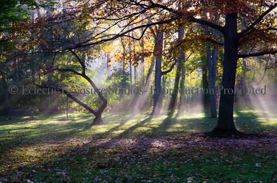 Holcomb Garden Sun, Butler University